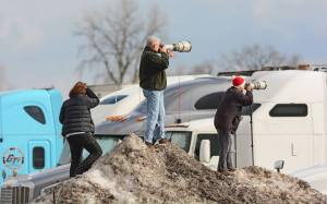 All this just for a glimpse of a Snowy Owl (photo by Roger Garber)
